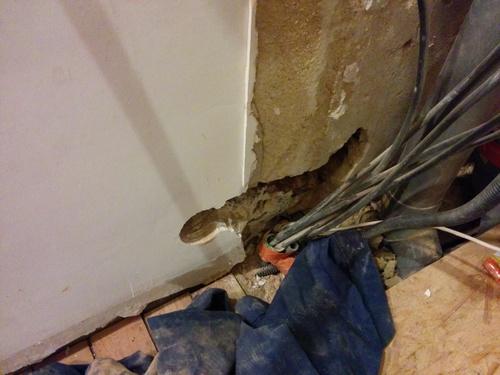 Salle de bain du premier electricité et préparation des murs